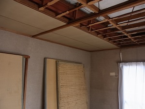 Pulling down the ceiling... wanna help?